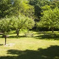 Orchard group picnic area at Saint Edward State Park.- Saint Edward State Park