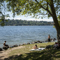 Lake Washington shoreline at Saint Edward State Park.- Saint Edward State Park