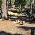 Sites are nestled in a fir and pine forest.- Bayview Trailhead Campground