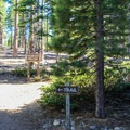 Serving as a trailhead into Desolation Wilderness, Bayview Trailhead Campground is popular with both backpackers and dayhiikers.- Bayview Trailhead Campground