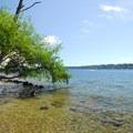 Lake Washington shoreline at at Saint Edward State Park.- South Canyon Trail Loop