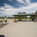 Off-leash dog area at Warren G. Magnuson Park.- Warren G. Magnuson Park