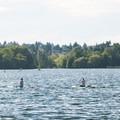 Stand-up paddleboards on Green Lake.- Green Lake