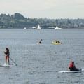 Paddlers on Elliott Bay.- Seacrest Park