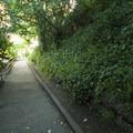 Lincoln Park.- Lincoln Park