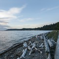 Walk along the Puget Sound at Lincoln Park.- Lincoln Park