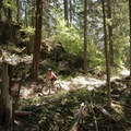 North Umpqua Trail, Lemelo segment.- North Umpqua Trail Mountain Biking: Lemelo Segment