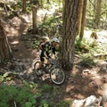 Short rocky sections are the most technical features on this ride.- North Umpqua Trail Mountain Biking: Lemelo Segment