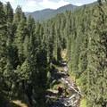 At one point the trail climbs a few hundred feet above the river that flows through a steep canyon.- North Umpqua Trail Mountain Biking: Dread and Terror Segment
