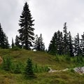The trail to Dock Butte on a cloudy day in September.- Dock Butte Hike