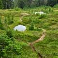 A tarn along Dock Butte Trail.- Dock Butte Hike