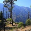 Icicle Ridge viewpoints.- Icicle Ridge Trail