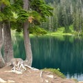Peninsula on Blue Lake.- Blue Lake