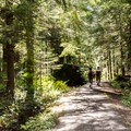A paved section of trail leading to Big Four Mountain.- Big Four Ice Caves