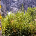 Signs warning of rockfall, avalanches, and collapsing snowfields. - Big Four Ice Caves