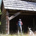 The Hand Lake Shelter would be a nice overnight camp.- Hand Lake