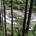Looking at the creek from the Greg Ball Trail.- Wallace Falls + Lake via Greg Ball Trail