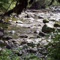 Views of the creek along the side of the trail.- Wallace Falls + Lake via Greg Ball Trail