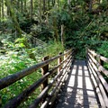 One of the many trail bridges on the way to Wallace Lake.- Wallace Falls + Lake via Greg Ball Trail