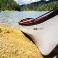 Finding a spot for lunch on the banks of Alder Lake.- Alder Lake
