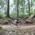 Springboard is generally smoother, straighter and not as steep as Highballer.- Alsea Flow Trails