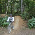 The trail network at Alsea is well signed.- Alsea Flow Trails