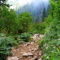 The Snow Lake Trail is in good shape considering the heavy use.- Snow Lake Hiking Trail