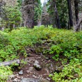 The trail to Spade Lake gets rocky and hard to follow in places.- Spade Lake