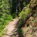 Trail remains gentle throughout most of hike.- Waptus River to Waptus Lake