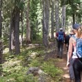 Much of the trail traverses open, dry woodlands.- Scott Mountain