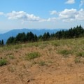 The broad summit of Scott Mountain is dry, dusty, and open.- Scott Mountain