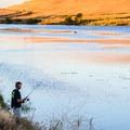 San Luis Reservoir.- San Luis Creek Campground
