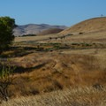Golden brown hills and meadows surround San Luis Creek Campground.- San Luis Creek Campground