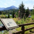 Interpretive information along the Gold Creek Pond Loop.- Gold Creek Pond Loop