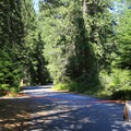 Portions of the campground may be temporarily closed.- Tumwater Campground
