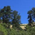 Arroyo Trail.- Arroyo Trail