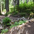 Trail gets steeper to Bear and Deer Lakes.- Bear + Deer Lakes