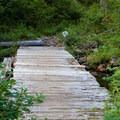 Bridge across marshy area.- Lake Elizabeth