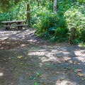 Typical site in Miller River Group Campground.- Miller River Group Campground