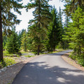 Road through Salmon la Sac Campground.- Salmon la Sac Campground