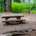 Typical campsite in Owhi Campground.- Owhi Campground