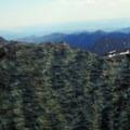 Diverse rock types.- Ingalls Peak