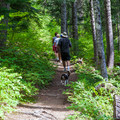Popular trail for families.- Cooper Lake