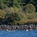 Paddlers head toward Discovery Park.- Golden Gardens to West Point Lighthouse Sea Kayaking