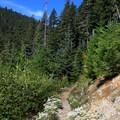 The Beckler Peak Trail tops out along a ridge.- Beckler Peak Trail