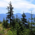 Bigger views open to the south.- Beckler Peak Trail
