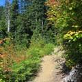 The terrain becomes a narrow footpath on the ridge- Beckler Peak Trail