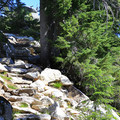 Steep switchbacks and rock stairs leading to the summit.- Beckler Peak Trail