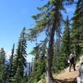 Switchbacks lead up to West Beckler Peak.- Beckler Peak Trail