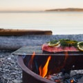 Campsites along the beach are equipped with picnic tables and fire grates.- Clark Island Sea Kayaking